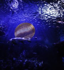 The Bitcoin Price Is About to Go Deep Underwater