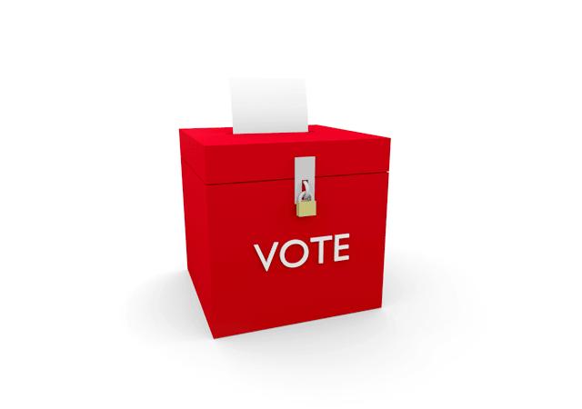 bitcoin board election
