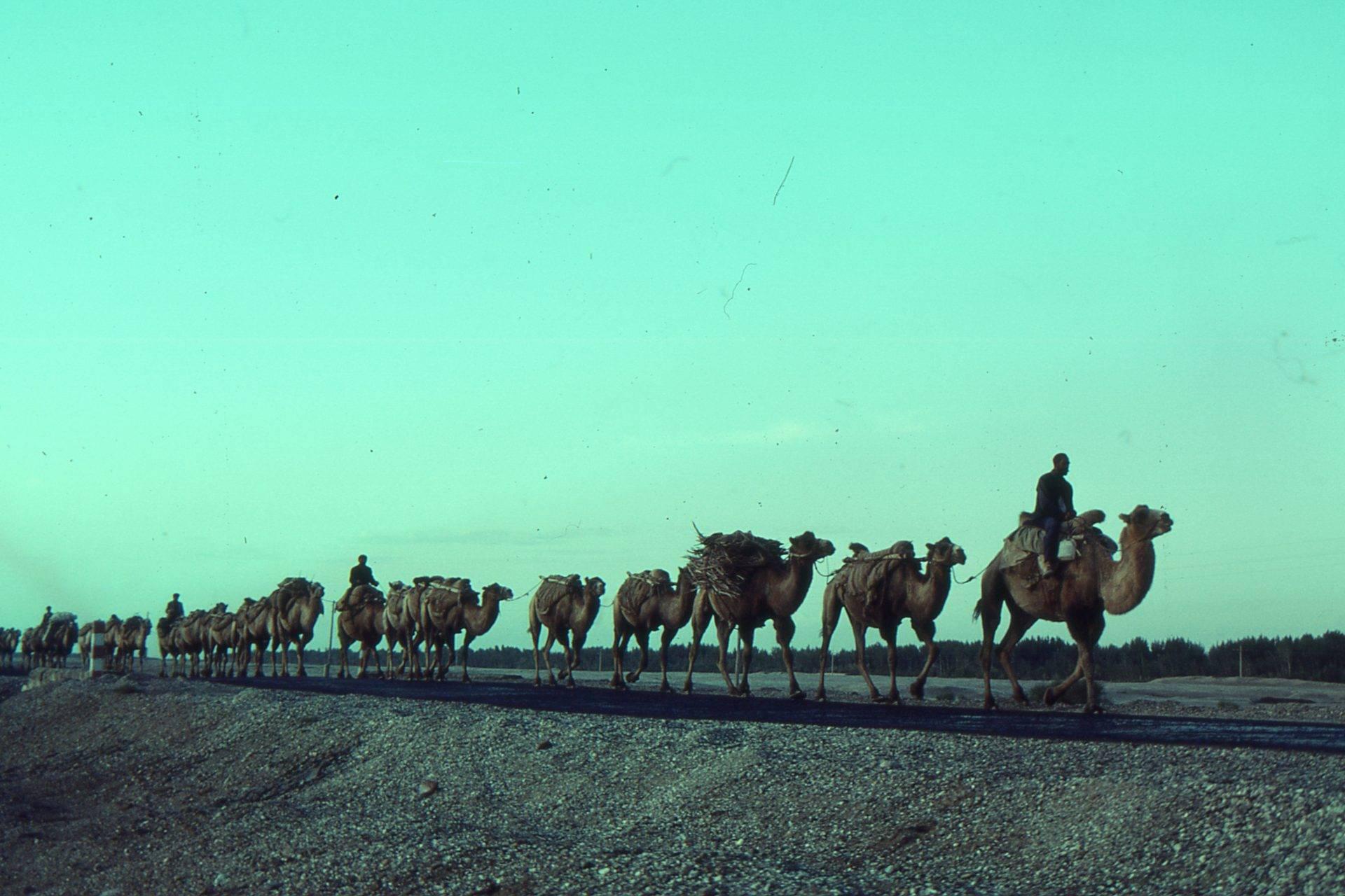 Silk Road Bitcoin