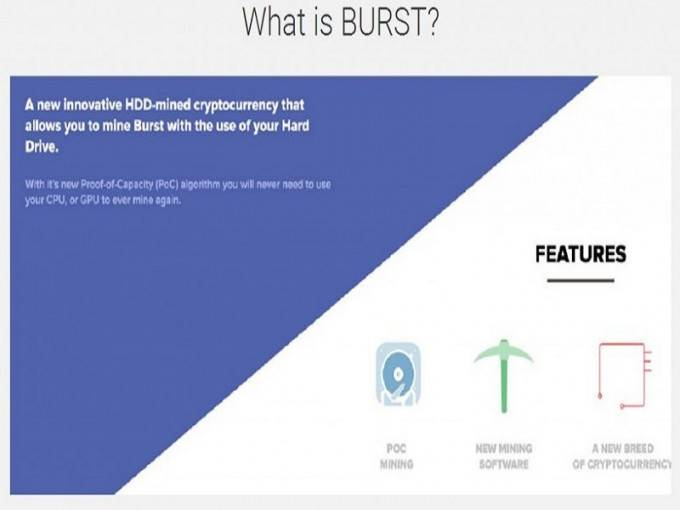 how to set up a burst wallet