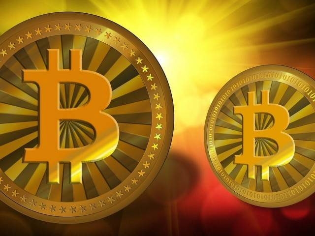 Inside the First Africa Bitcoin Conference: Lorien Gamaroff Offers Sneek Peek