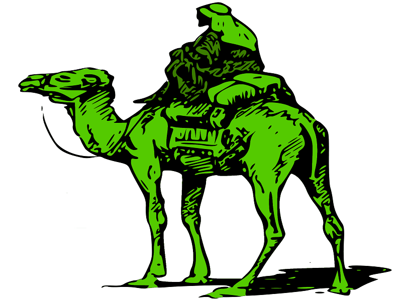 Silk-Road-Marketplace-Camel-11.png