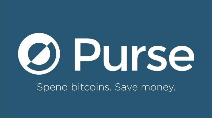 Purse Bitcoin Andrew Lee