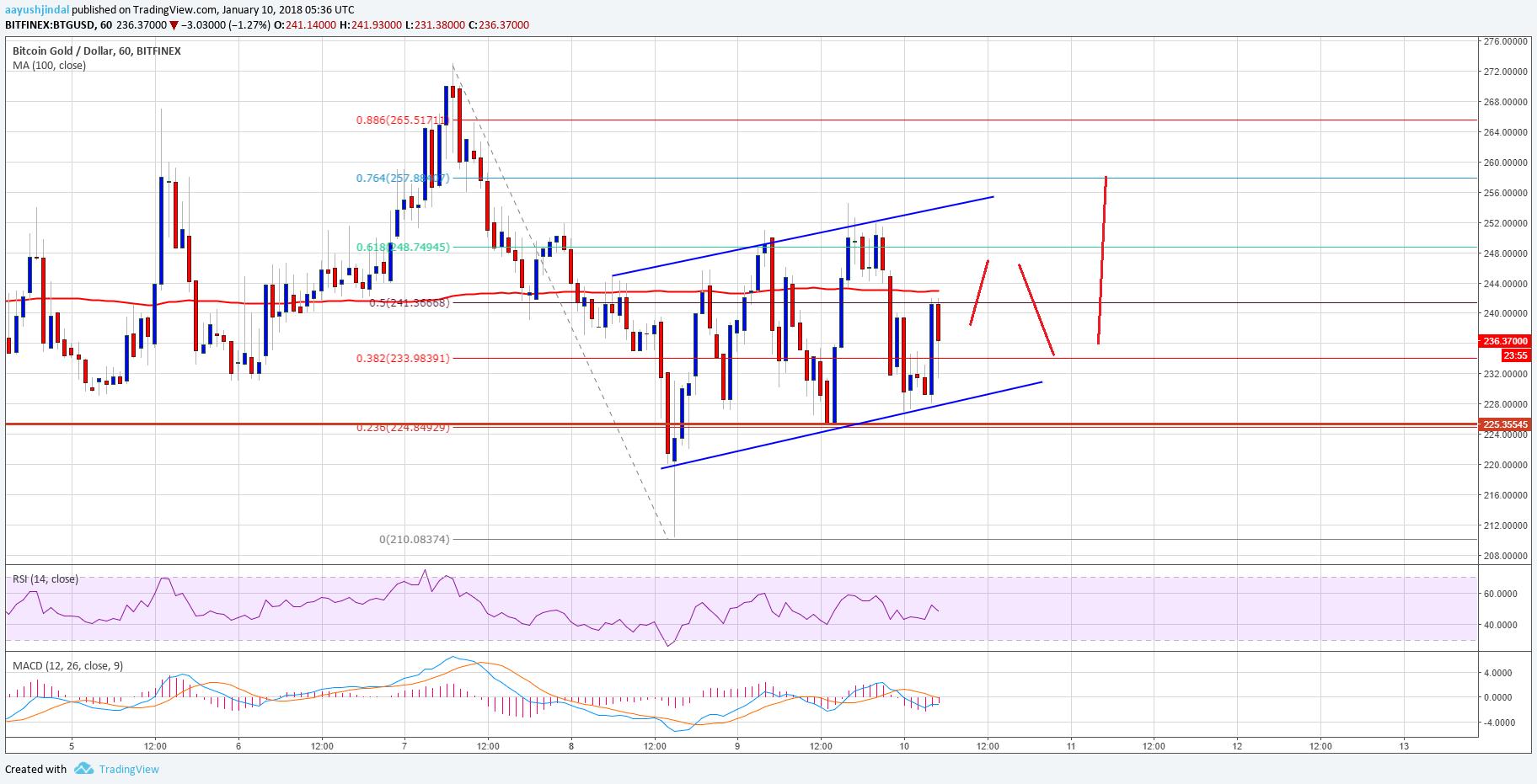 Bitcoin Gold Price Technical Analysis – BTG/USD Holding $220