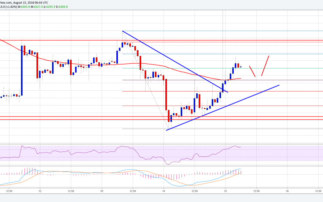 Crypto Market Decline Aggravates as Ripple and Ethereum Hit Yearly Lows