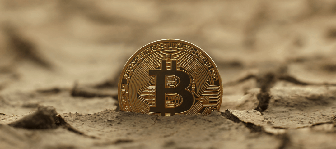 Cryptocurrency fever? has begun