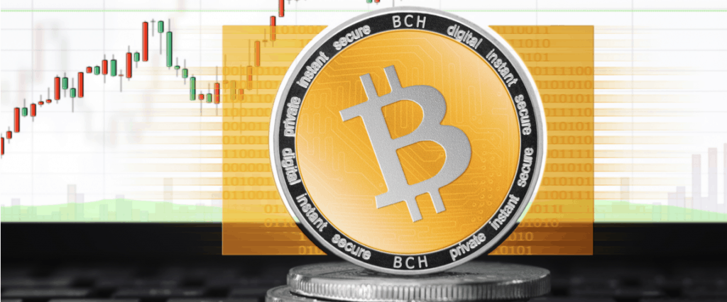 Bitcoin Cash Price Predictions for 2019 - Will it Hit $700?