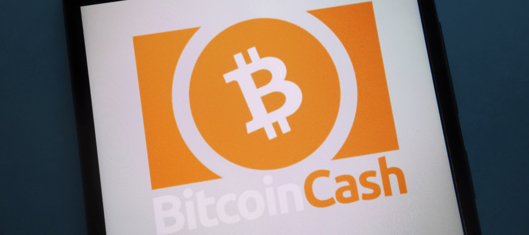 Best Bitcoin Cash Wallets in 2019: Picking a Bitcoin Cash Wallet for Your Needs