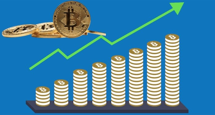 bitcoin investment 2019