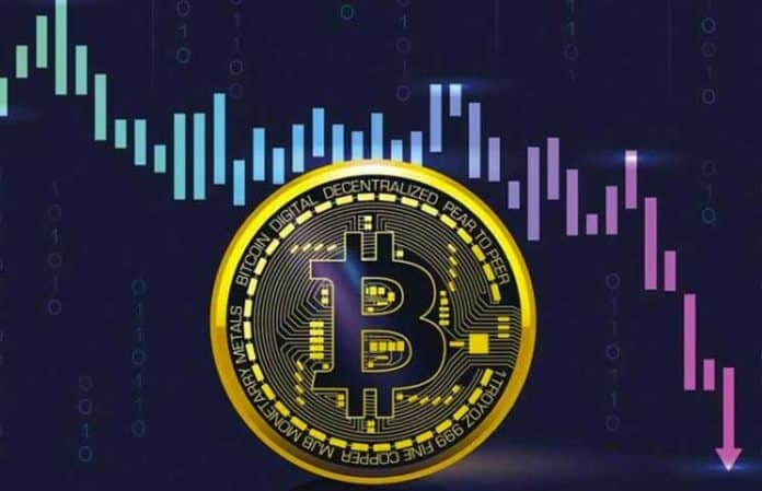 Bitcoin Daily Price Forecast