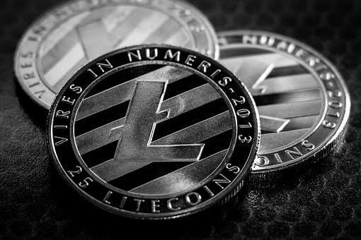Litecoin Users Urge Charlie Lee to Bankroll New Privacy Development