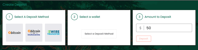 CedarFX Payment Methods