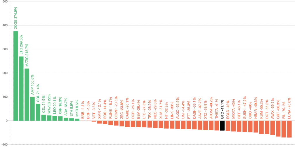 Top 50 coins performance
